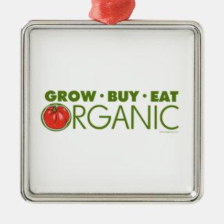Organic Ornament