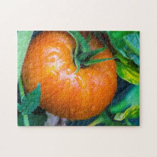 Organic Tomato Puzzle