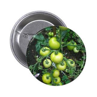 Organic Tomatoes Pin