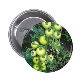 Organic Tomatoes Pins