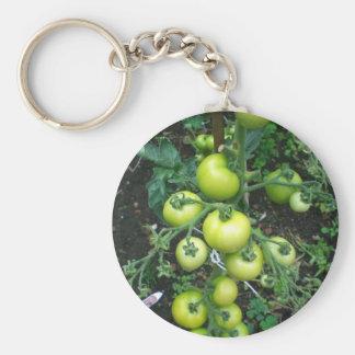 Organic Tomatoes Key Chains