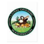 Organic Washington Post Cards