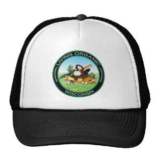 Organic Wisconsin Hat