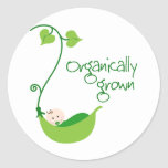 Organically Grown Baby Round Stickers