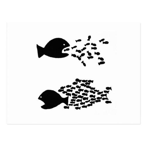 organice la postal de los pescados