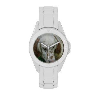 Organismo inglés lindo relojes de pulsera