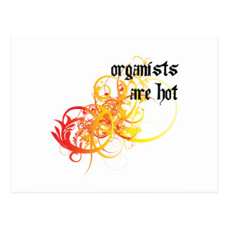 Organists Are Hot Postcards