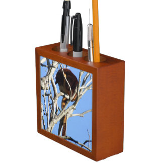 Organizador del escritorio del canguro de árbol portalápices