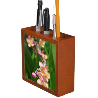 Organizador del escritorio del Orchidaceae
