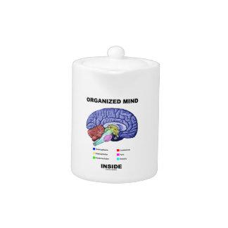 Organized Mind Inside (Anatomical Brain Attitude)