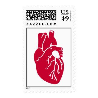 Órgano rojo del corazón estampilla