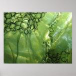 Organza verde poster