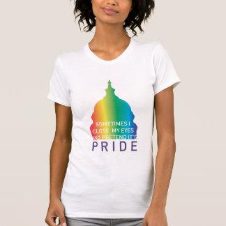 Orgullo 2010 de DC Camiseta