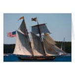 Orgullo alto de la nave de Baltimore Tarjeta