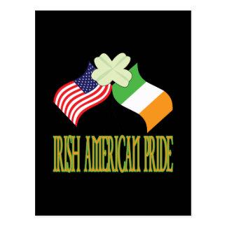 Orgullo americano irlandés tarjeta postal