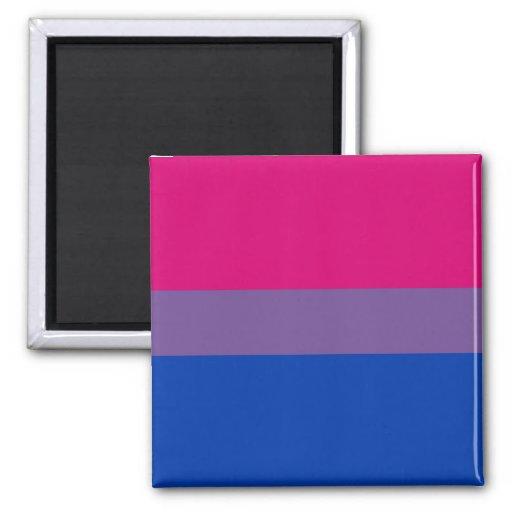 Orgullo bisexual imán de frigorífico