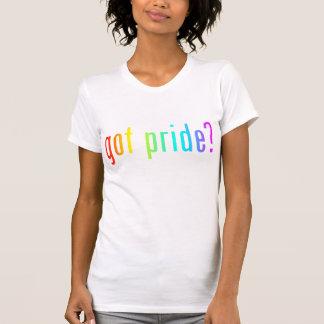 ¿orgullo conseguido camisetas