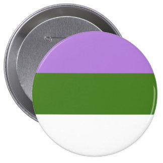 ORGULLO DE GENDERQUEER PINS