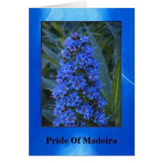 Orgullo de la flor de Madeira Tarjeta De Felicitación
