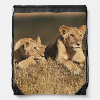 Orgullo de leones masculinos jovenes mochila