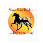 Orgullo del caballo que camina postales