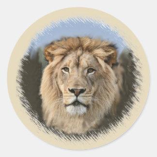 Orgullo del león pegatinas redondas