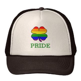 Orgullo gay de la bandera del arco iris del trébol gorro