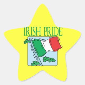 Orgullo irlandés pegatinas forma de estrellaes