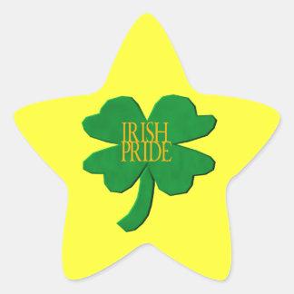 Orgullo irlandés calcomanías forma de estrella personalizadas