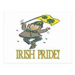 Orgullo irlandés postales