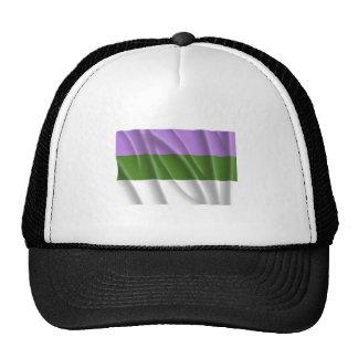 Orgullo la Florida del genderqueer que agita Gorra