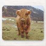 ¡Orgulloso ser escocés! Alfombrillas De Ratón
