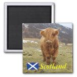 ¡Orgulloso ser escocés! Iman