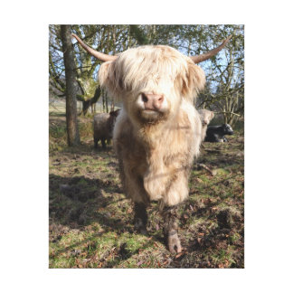 ¡Orgulloso ser escocés! Impresión En Lienzo