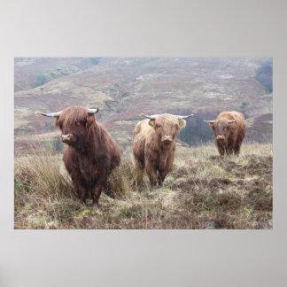 ¡Orgulloso ser escocés! Póster
