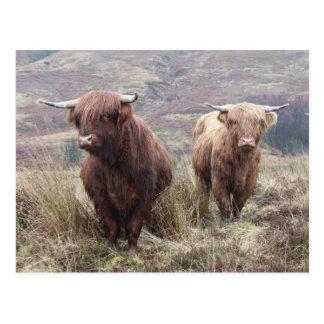 ¡Orgulloso ser escocés! Postal