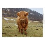 ¡Orgulloso ser escocés! Tarjeton