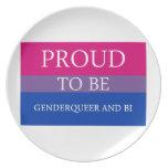 Orgulloso ser Genderqueer y BI Platos Para Fiestas
