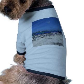Orient Bay Beach Doggie T Shirt