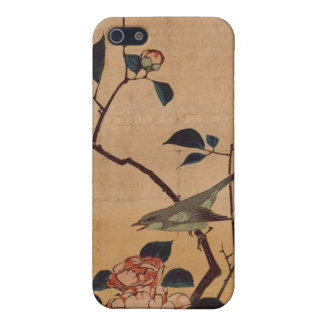 Oriental Camellia and Warbler iPhone SE/5/5s Cover