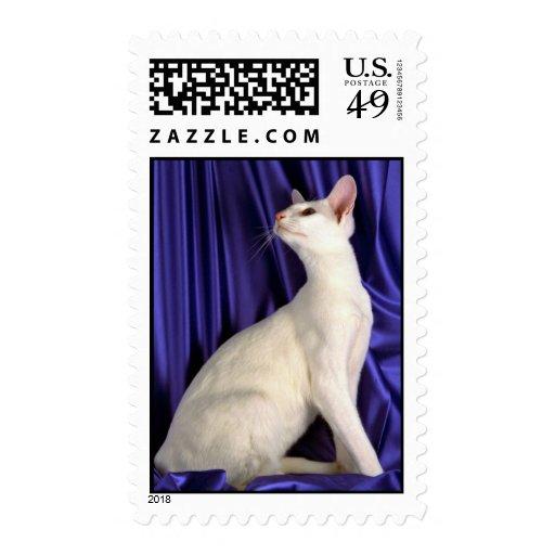 Oriental extranjero, blanco sello