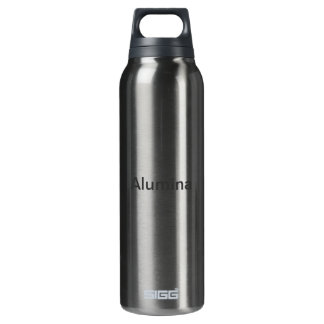 Oriental Festive Decorations 16 Oz Insulated SIGG Thermos Water Bottle