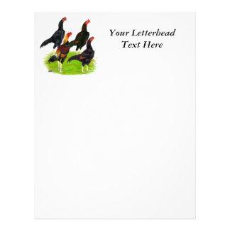 Oriental Game Fowl Quartet Letterhead