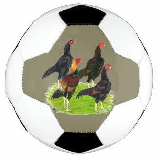 Oriental Game Fowl Quartet Soccer Ball