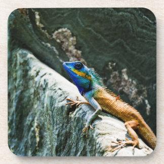 Oriental Garden Lizard Coasters
