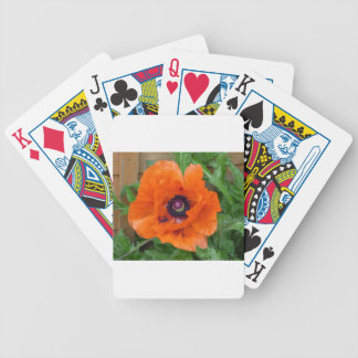 Oriental Garden Poppy Bicycle Playing Cards
