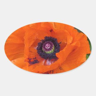 Oriental Garden Poppy Oval Sticker