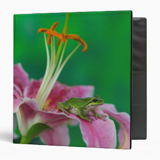 Oriental Lily and Pacific tree frog resting on 3 Ring Binder
