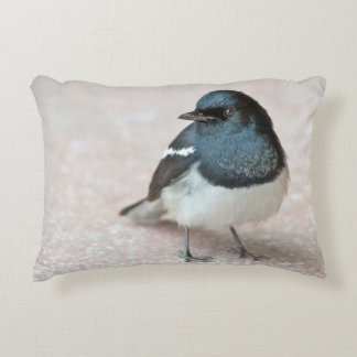 Oriental Magpie-Robin (Copsychus saularis) Decorative Pillow
