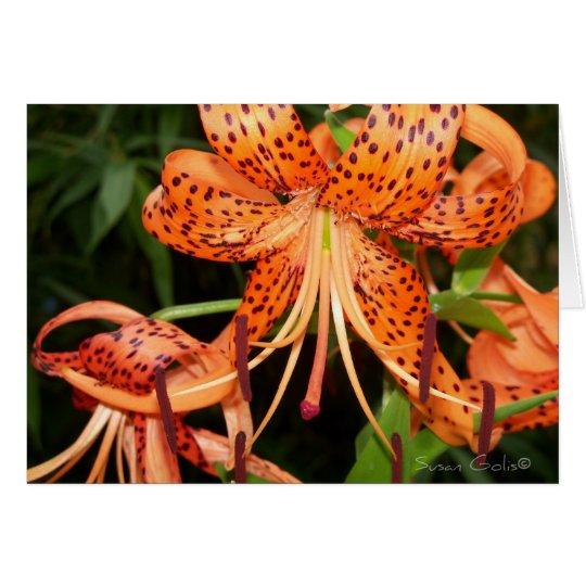 Oriental Orange Tiger Lilies Card